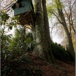 Treehouse in Arnhem, Netherlands